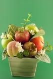 Frutas modelo Imagem de Stock