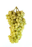 Frutas na uva branca do fundo Imagens de Stock Royalty Free