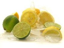 Frutas no gelo imagens de stock