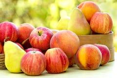 Frutas orgánicas frescas Imagen de archivo libre de regalías