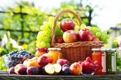 Frutas orgánicas maduras frescas en el jardín Dieta equilibrada Fotografía de archivo