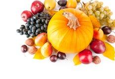 Frutas otoñales con las hojas amarillas Imagen de archivo libre de regalías
