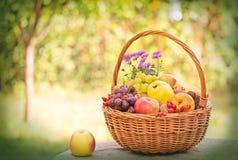 Frutas otoñales en cesta de mimbre Fotos de archivo