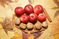 Frutas otoñales en las hojas Imagenes de archivo