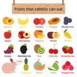 Frutas que los conejos pueden comer Ejemplo del vector de la comida stock de ilustración