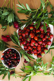 Frutas rojas Foto de archivo