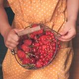 Frutas rojas del verano foto de archivo