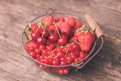 Frutas rojas del verano imagen de archivo