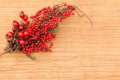 Frutas rojas en la Navidad de la rama para la decoración Fotos de archivo libres de regalías