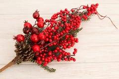 Frutas rojas en la Navidad de la rama para la decoración Foto de archivo
