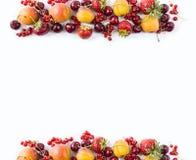 Frutas rojas y amarillas en el fondo blanco Albaricoques maduros, pasas rojas, cerezas y fresas Frutas dulces y jugosas en el bor Imagen de archivo libre de regalías