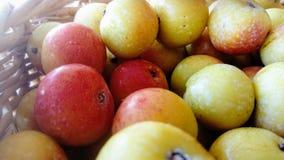 frutas Rojo-amarillas de la baya de serbal en una cesta de punto imagenes de archivo