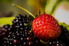 Frutas sabrosas del verano en la tabla. Cereza, bayas azules, fresa, frambuesas, zarzamoras, granada Foto de archivo
