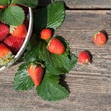 Frutas sabrosas del verano en una tabla de madera Imagenes de archivo