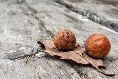 Frutas salvajes fotografía de archivo
