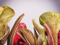 Frutas secadas Foto de archivo