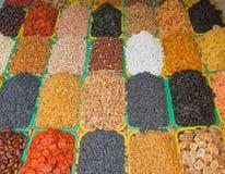 Frutas secadas de tipos diferentes Fotografia de Stock