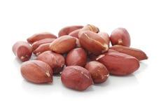 frutas secadas do amendoim isoladas Imagens de Stock