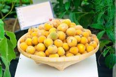 Frutas tailandesas locales Imágenes de archivo libres de regalías