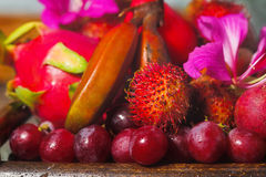 Frutas tropicais Fotografia de Stock Royalty Free