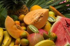 Frutas tropicales Fotografía de archivo