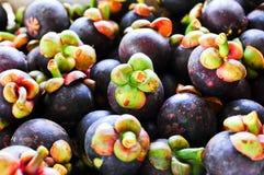 Frutas tropicales de los mangostanes Imagen de archivo