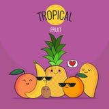 Frutas tropicales divertidas fijadas Piña, mango, naranja, kiwi, plátano, pomelo Historieta del vector Amigos por siempre Charact Imágenes de archivo libres de regalías