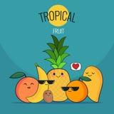 Frutas tropicales divertidas fijadas Piña, mango, naranja, kiwi, plátano, pomelo Historieta del vector Amigos por siempre Charact Foto de archivo