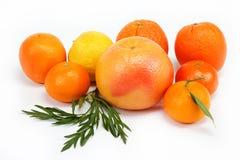 Frutas tropicales en un blanco. Imagen de archivo