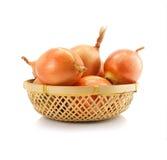 Frutas vegetais da cebola no vaze isolado Fotos de Stock Royalty Free