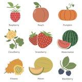 Frutas y bayas Foto de archivo libre de regalías