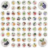 Frutas y bayas Imagen de archivo libre de regalías