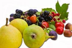 Frutas y bayas Fotografía de archivo libre de regalías