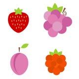 Frutas y bayas coloridas Imagen de archivo libre de regalías