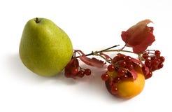 Frutas y bayas del otoño Imagenes de archivo