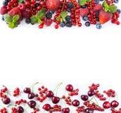 Frutas y bayas rojas y negro-azules Pasas rojas, fresas, frambuesas, zarzamoras, arándanos, cerezas y negro maduros Imagen de archivo libre de regalías
