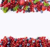 Frutas y bayas rojas y negro-azules Pasas maduras, arándanos, fresas, frambuesas, zarzamoras en el fondo blanco Sea Fotos de archivo libres de regalías