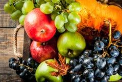 Frutas y calabaza estacionales de la caída Foto de archivo