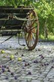 Frutas y carro Fotografía de archivo libre de regalías