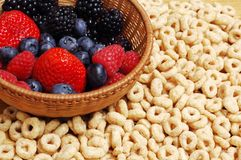 Frutas y cereales del bosque foto de archivo