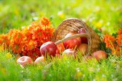 Frutas y flores en otoño Fotos de archivo