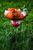 Frutas y helado Foto de archivo libre de regalías