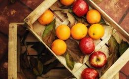 Frutas y hojas en la caja de madera Foto de archivo