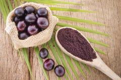 Frutas y powde del acai Imagenes de archivo
