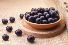Frutas y powde del acai Imagen de archivo libre de regalías
