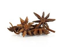Frutas y semillas de la especia del anís de estrella aisladas en el fondo blanco Imágenes de archivo libres de regalías