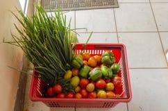 Frutas y verduras condimentadas naturales en cesta plástica fotos de archivo