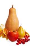 Frutas y verduras de la cosecha de Autum con las hojas amarillas Imagen de archivo libre de regalías