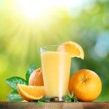 Frutas y vidrio anaranjados de zumo de naranja Foto de archivo libre de regalías