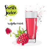 Frutas y vidrio de Juice Fresh Hand Drawn Watercolor de la frambuesa en el fondo blanco Fotografía de archivo